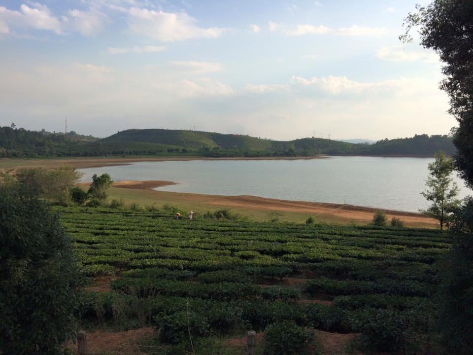 Meine Reise in das Land der Teeberge